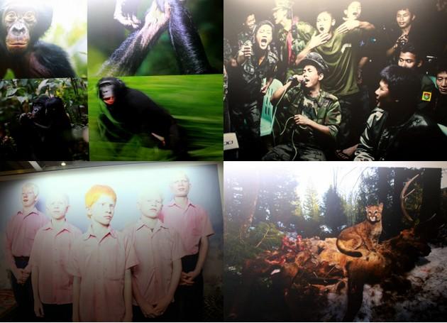 Bilder von der Worldpress Photo Ausstellung